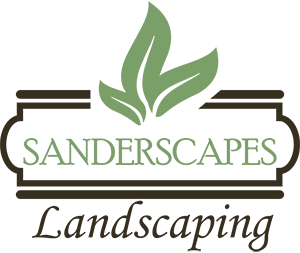 Sanderscapes